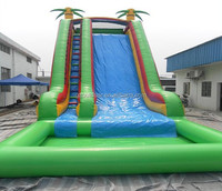 Good quality PVC giant inflatable water slide with pool for adult