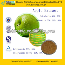 GMP Certified Factory Supply High Quality Apple Skin Extract