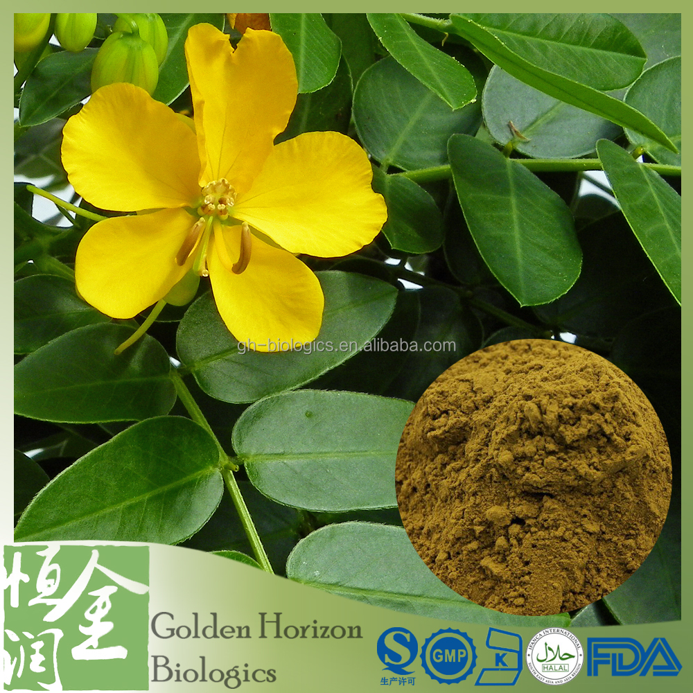 Plant Extract Herbal Extract 10:1 Senna Leaf Extract