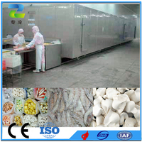 Food Processing Machine Stainless Steel Belt IQF Tunnel Freezer