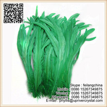 Factory wholesale cheap best rooster cock tail feather
