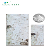 Cosmetic Ingredients Natural Birch Bark Extract Powder Betulin 98% CAS 473-98-3