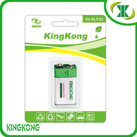 6LR61 ALkaline Dry Battery 9V ALkaline Battery with blister card Outperforms