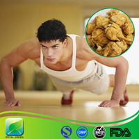 High Quality Maca Extract Powder for Hormone Improvement