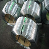 Galvanized Steel Wire Rod Coil for weaving and fencing