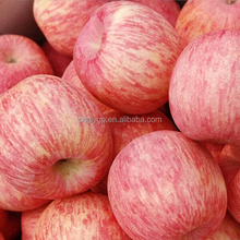 Fruit product fresh sweet China Henan red fuji apple price