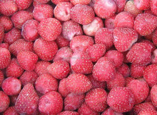 bulk frozen strawberry brands