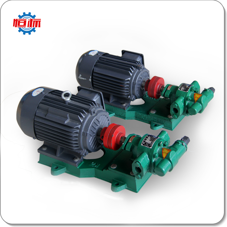 Shenghui Pumps booster pump electric oil transfer pump