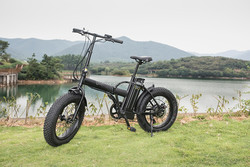 EEC approved electric bike chopper with KT display