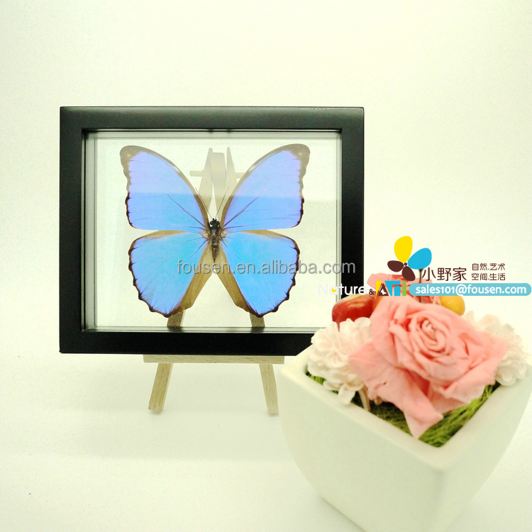 "FOUSEN(039 Random Species) Nature&Art 8"" (double glasses) framed butterfly"
