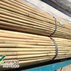 Bamboo Raw Material Bamboo Pole