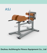 Gym equipment/back stretching muscle exercise equipment/commercial roman chair ASJ-S871