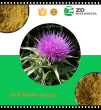 Natural Silybum marianum P.E/Milk Thistle extract / Milk Thistle extract powder/ Silymarin & Silibinin