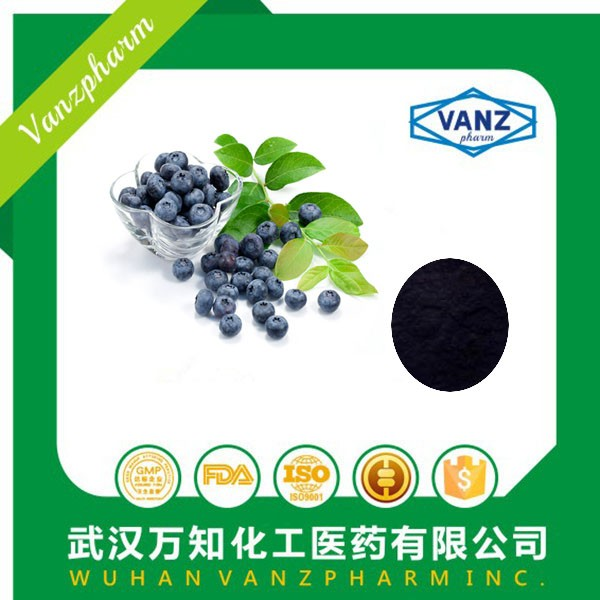 High quality Black Currant Extract 75%