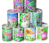Can tinned plant mini flower green plant seed office interior desktop creative fun potted gift