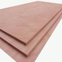 Linyi China Construction Real Estate Plywood