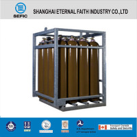 Industrial Seamless Steel Cl2 Gas Cylinder