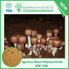 Anti cancer herbal extract Agaricus Blazei Extract Agaricus Blazei polysaccharide 50%