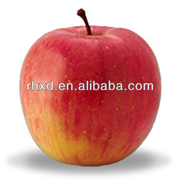 chinese new crop summer red apple Fresh Royal Gala Apple