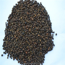 China hainan province black pepper with good price for hot sale