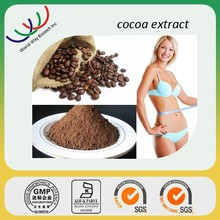 100% Best Quality Cocoa Extract, Theobroma Cocao Extract