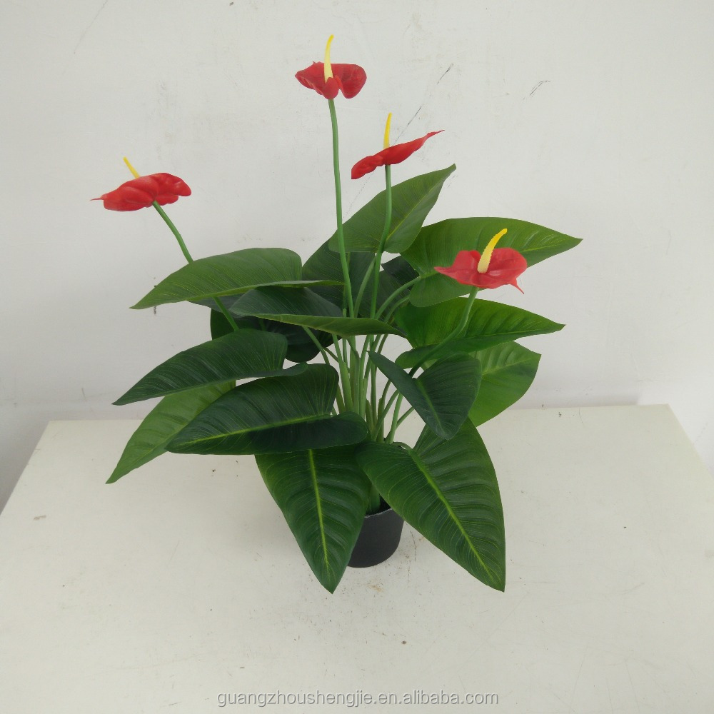 anthurium artificial flowers anthurium plants for sale