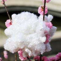hollow fibre pillows stuffing material 15d 64mm HCS polyester staple fibre chemical fiber