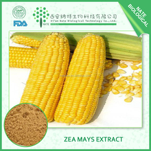 Top Quality Zea Mays Extract,Zea Mays Extract Powder,Zea Mays Dried Extract 20:1