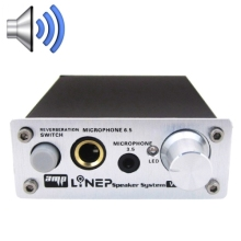 Professional Two-channel Microphone Amplifier Dual Microphone Reverb