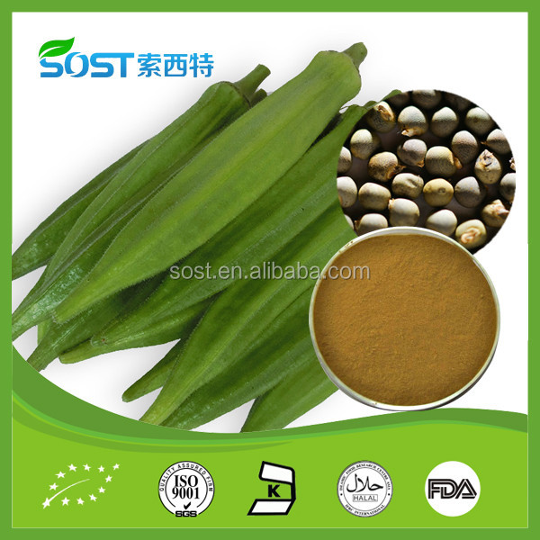 High quality okra seeds extract powder for male health