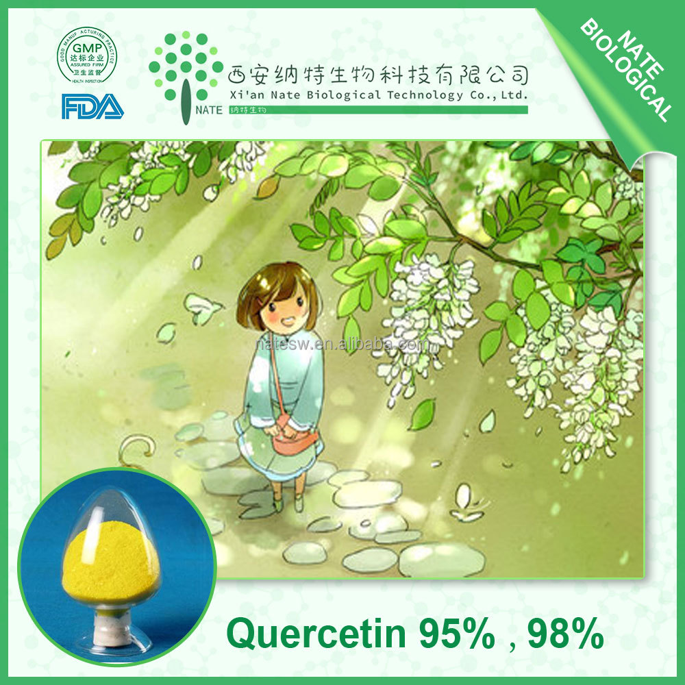 Medicine Traditional Chinese High Purity 98% Quercetin Plant Extract