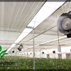 Automatic Control PC Sheet Greenhouse With