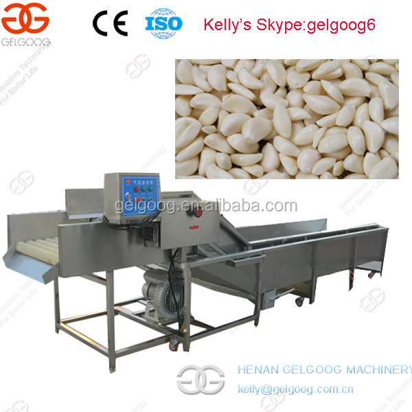 Garlic Juice and Ginger Juice Machine Garlic Cutting Machine