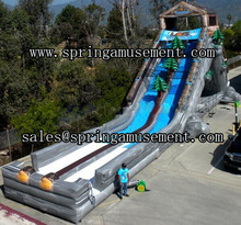 Double lane inflatable giant hippo water slide for commercial use SP-SL129