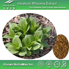 Veratrum Rhizoma Extract, Veratrum Rhizoma Extract Powder, Natural Veratrum Rhizoma Extract