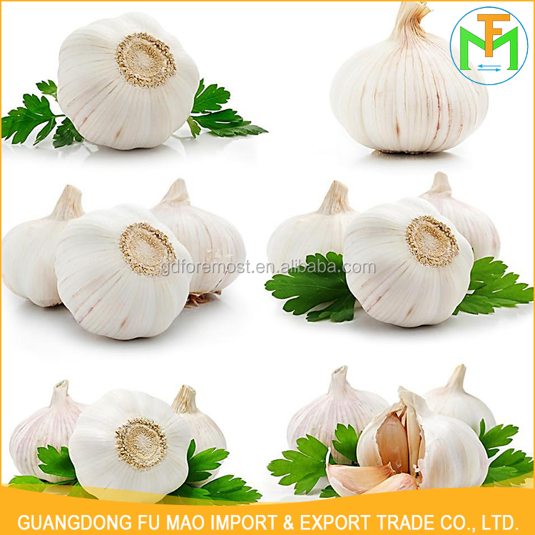 China Professional Organic Exporters Food Supply 5.5Cm Normal Pure White Natural Garlic