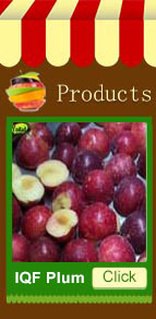 New Crop Natural Green Frozen Fruit IQF Kiwi
