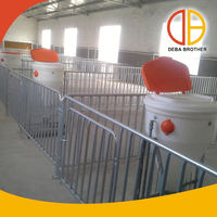 Poultry equipment pig farming house