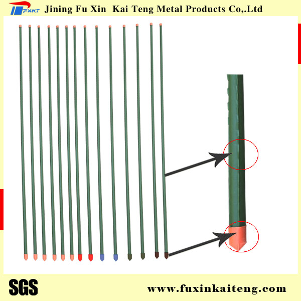 Plastic Coated Steel Tube Garden Stakes