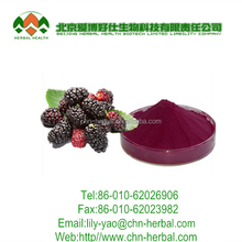Mulberry Extract/Mulberry fruit extract/Pure Natural 100% Mulberry Leaves Extract