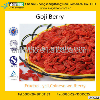 GMP manufacturer supply natural Ning xia wolfberry/Dried Goji/ Dried Red Medlar