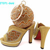 Gorgeous Wedding Female Shoes And Bag