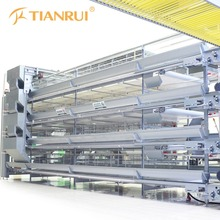 Tianrui High Quality H Type Automatic Poultry Cage 5 Layers