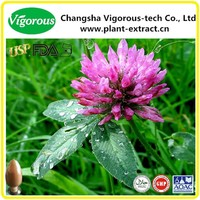 Free Samples Red Clover Extract/Red Clover Extract Powder/Red Clover Isoflavones