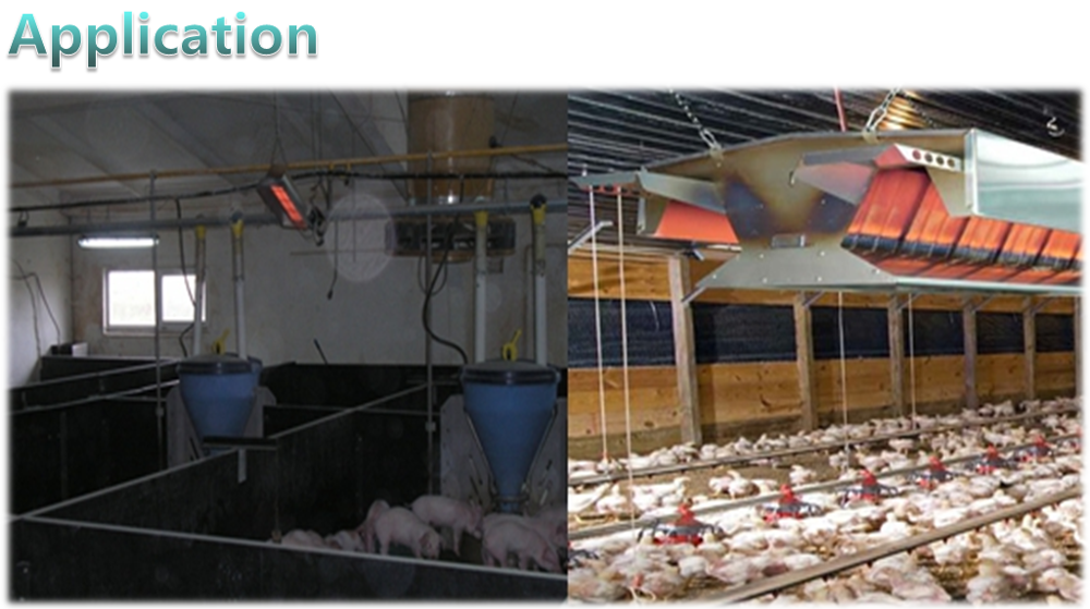 Poultry equipment quail chicken/duck farm heating system, electric gas infrared heater for sale