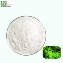 High Quality Free Sample Natural Herbs Sweet Wormwood Herb Extract 98% Artemisinin