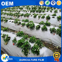 China Manufacturer LDPE Stretch Crops Use Agricultural Plastic Film