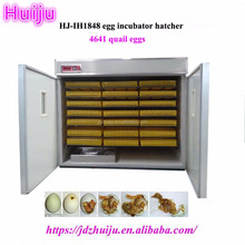 Setter and Hatcher 4500 quail Eggs Poultry Egg Incubators with Low Price HJ-IH1848