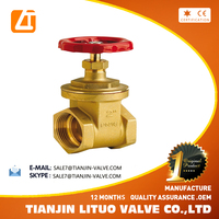 New Design High Quality Stem Brass Water Gate Valve pn16