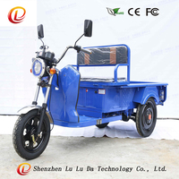 48V 500W 3 wheel cargo electric motorcycles 12pipes cargo electric tricycle